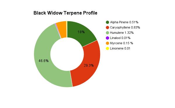 black-widow-terpene-profile