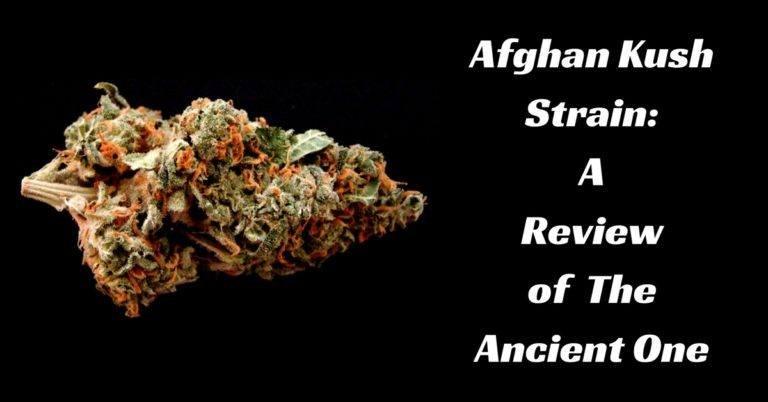 Afghan_Kush_review