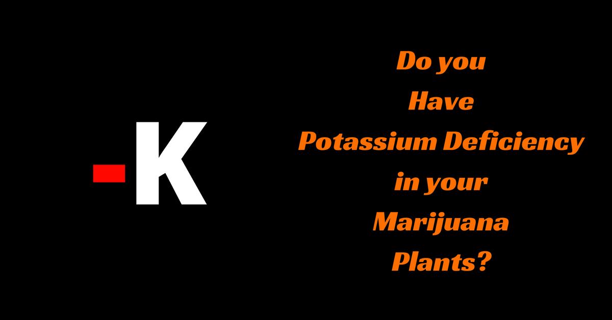 Do you Have Potassium Deficiency in your Marijuana Plants?