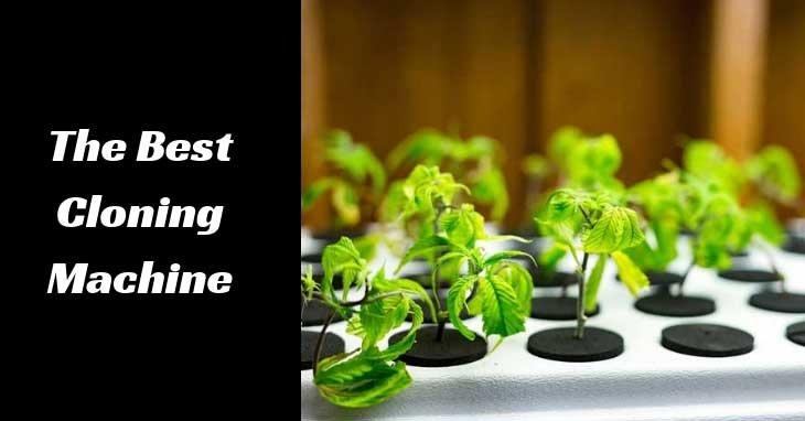 best-cloning-machine-cannabis